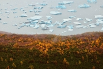 Fall colors and icebergs at the Knik Glacier in Alaska