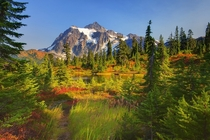Fall Colors at Picture Lake Mount Shuksan Washington  photo by Kevin McNeal