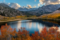 Fall colors Eastern Sierras California
