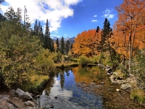 Fall colors in Bishop Creek Canyon California