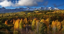 Fall Colors in the San Juan Mountains of Colorado  by Sherry Bell