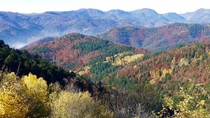 Fall colors in the Vosges mountains Alsace France  OC