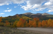 Fall colors of the Boreas Pass Colorado