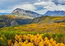 Fall colors over Kebler Pass Crested Butte Colorado   x