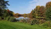 Fall colours golfing in eastern Ontario   x