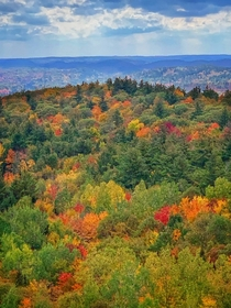 Fall colours in the Lanark Highlands Ontario Canada  OC