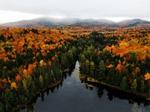 Fall foliage in the Adirondack Mountains  Andrew Tyler - ajtyler