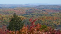Fall foliage in the Black Mountains of Outaouais Qubec