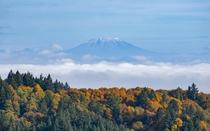 Fall Foliage in the Pacific Northwest is something quite special to witness Mt St Helens amp Mt Adams pictured from Portland