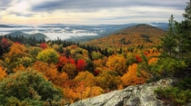 Fall Foliage on Mount Morgan today in New Hampshire