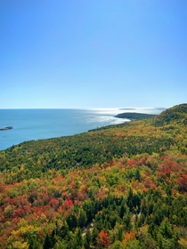 Fall  in Acadia National Park