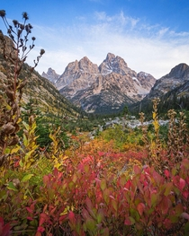Fall in Grand Teton National Park aint so bad Ignatureprofessor