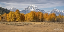 Fall in Grand Teton National Park Wyoming