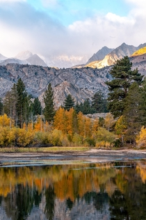 Fall in the Eastern Sierras is a magical time