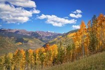 Fall In The High Country - Vail CO