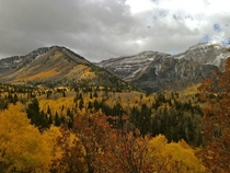 Fall in Utah is beautiful My phone doesnt do it justice Sundance UT