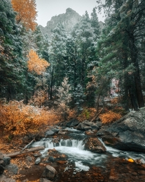 Fall isnt ready to let go yet Utah  x IG rondinasnaps