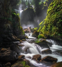 Falls Creek Falls Gifford Pinchot National Forest WA