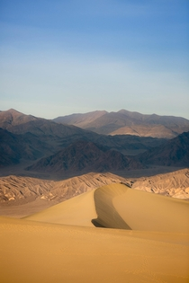 Feeling beautifully small among these giants Death Valley CA  relativebrand
