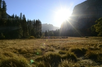 Feeling those post holiday blues so heres a Yosemite National Park Meadow from last month
