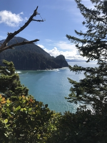 Felt this was worthy Oregon coast just south of Cannon Beach Cape Falcon Trail