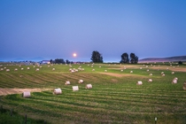 Field in Bozeman MT with Blood Moon from Canadas Forrest Fires  x