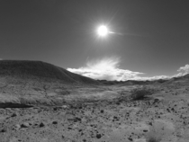 Fields of bleakness in Anza Borrego State Park California