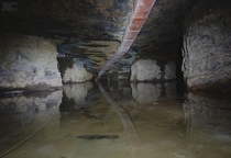 Finding The Bakunawa Within A Flooded Limestone Mine