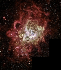 Firestorm of Star Birth Seen in a Local Galaxy NGC