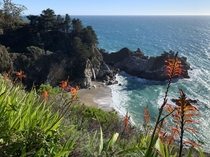 First day of clear skies after two weeks of rain at McWay Falls Big Sur CA