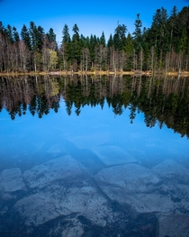 First days of spring little hike and a small lake to benefit of the tranquility of the nature Vosges France - Lac de la Maix  OC