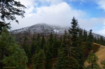 First dusting of snow in the Sierra yesterday North of Lake Tahoe near Mt Rose