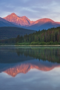 First light awakens the mountains - Jasper Canada  x