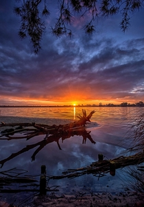 First Light Canning River Western Australia oc x