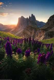 First light in Seceda Dolomites  marcograssiphotography