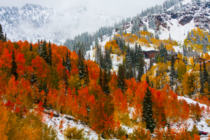 First snow hit Little Cottonwood Canyon in Salt Lake City
