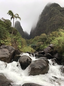 First time in Maui landed at am and met a local who showed me this spot Ioa Valley Maui