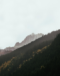 First time in the Swiss Alps with some fall colors peaking through
