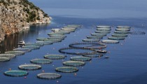 Fish-farming facilities on the coast near Epidaurus in Greeces southern Peloponnese region of Corfos