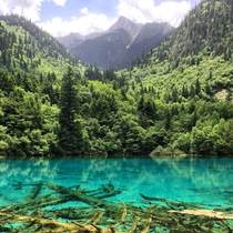 Five Flower Ocean Lake in June Jiuzhaigou China