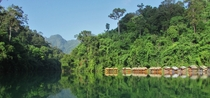 Floating bungalows on Khao Sok Lake Thailand