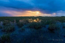 Florida Everglades Sunrise Everglades National Park -