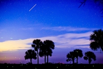 Florida only has  dark sky spots in the state This is at Kissimmee Prairie Preserve over the weekend I live the star scattered sky and the city of fireflies in this image There is also the lyrid meteor shower that has been going on