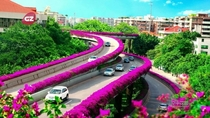 Flower lined highway in Guangzhou