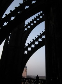 Flying Buttresses of the Cologne Cathedral at dusk
