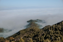 Fog across the Montserrat valley in Barcelona