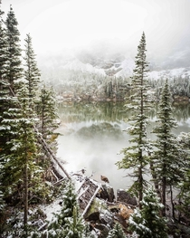 Fog and snow came together here as I was looking for old Nessy Loch Lake in Rocky Mountain National Park Colorado