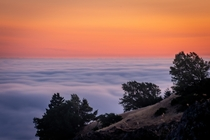 Fog Blanket over San Francisco from Mt Tamalpais California