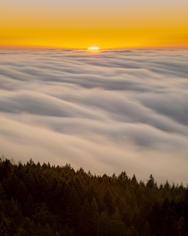 Fog Rolling like Whip Cream over Mill Valley as the Sun looks like a Ball of Fire Mt Tamalpais State Park California