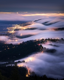 Fog rolls in over the City of Marin CA